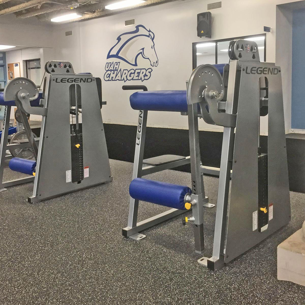 Posterior Chain Training Equipment by Legend Fitness