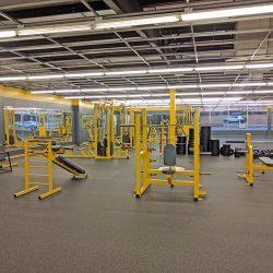 Ozark Iron Gym - Fayetteville, AR